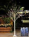 LightshareTM NEW 6FT 72L LED Birch Tr…