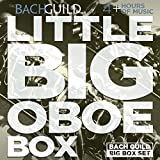 Little Big Oboe Box