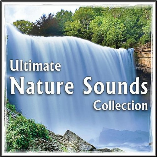 Rain Showers, Thunder Storm, Waterfalls MP3 Track for Relaxation, Spa