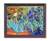 Vincent Van Gogh Flower Les Irises Picture Framed Art Print
