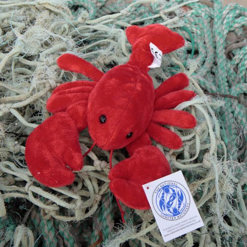 fluffy-lobster-in-red-and-blue-red