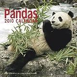 Pandas 2010 Wall (Wall Calendar)