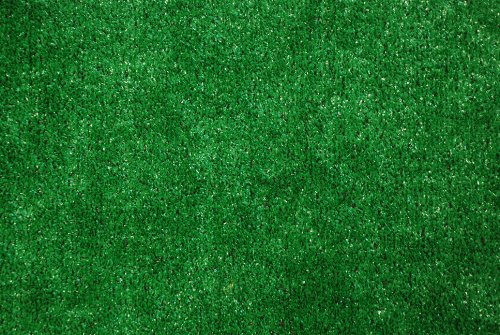 Indoor/Outdoor Green Grass Turf Area Rug 5'x6'