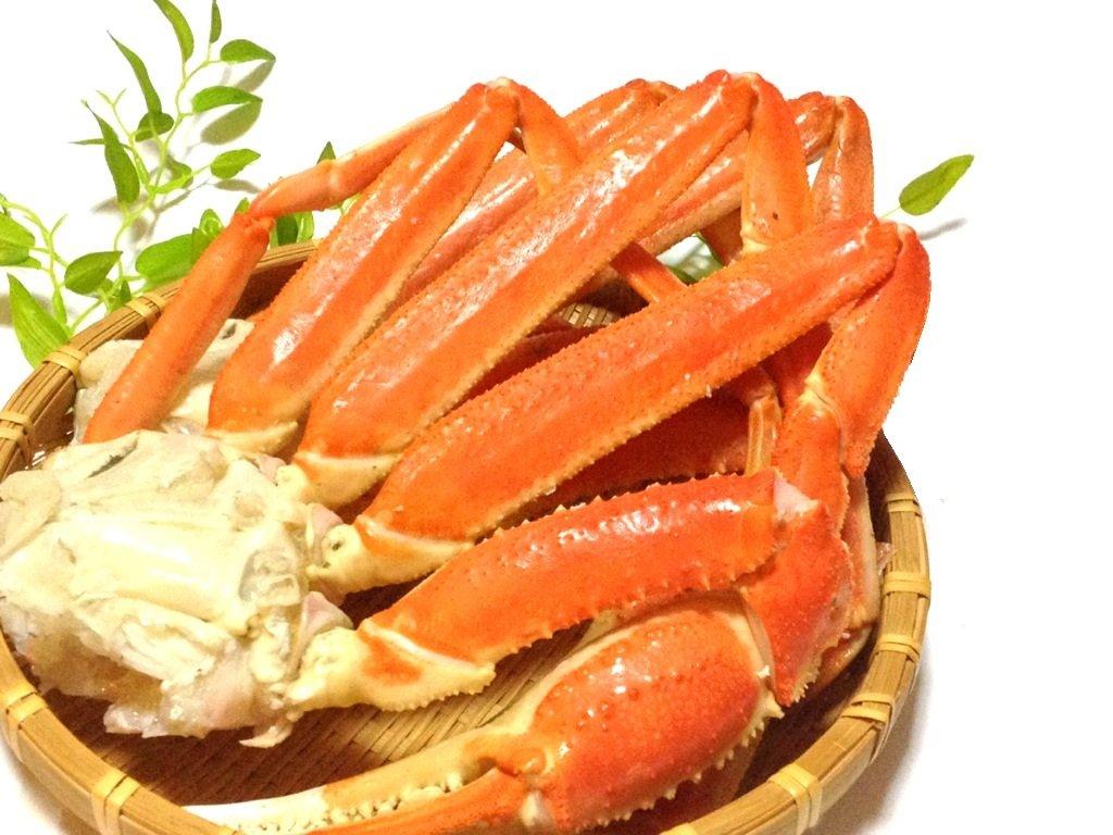 【北海道加工】天然ロシア産ボイル本ずわい蟹(極太2Lサイズ)