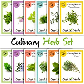 12 Culinary Herb Assortment (Sage, Rosemary, Spearmint, Basil, Oregano, Cilantro, & More!) Seeds by Seed Needs