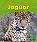 Jaguar (A Day in the Life: Rainforest...