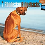 BT Rhodesian Ridgebacks 2015 Wall