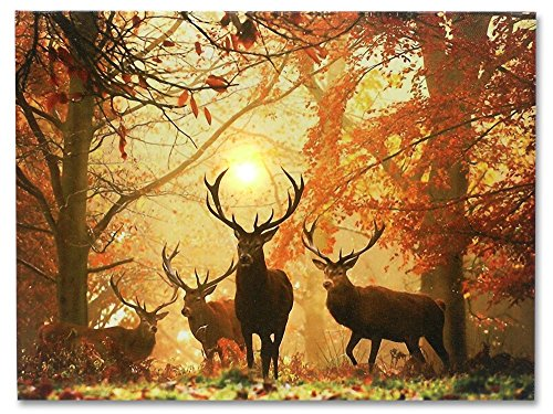 deer-picture-led-big-buck-wrapped-canvas-print-white-tail-deer-in-autumn-forest-wildlife-wall-decora