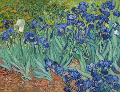 Oil Painting 'Irises, 1889 By Vincent Van Gogh' Printing On High Quality Polyster Canvas , 30x39 Inch / 76x99 Cm ,the Best Garage Decor And Home Decoration And Gifts Is This Cheap But High Quality Art Decorative Art Decorative Canvas Prints