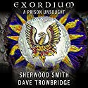 A Prison Unsought Audiobook by Sherwood Smith, Dave Trowbridge Narrated by James Patrick Cronin