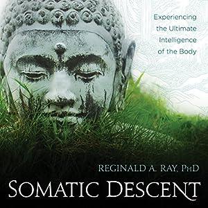 Somatic Descent Speech