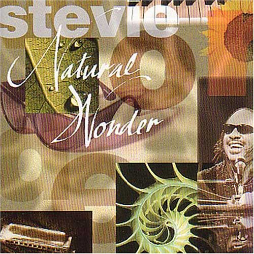 Stevie Wonder - Natural Wonder (Live) - Zortam Music