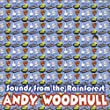 Andy Woodhull - Live in Concert