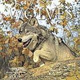Wolves 2009 Calendar (Calendar)