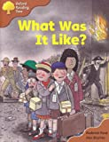 Oxford Reading Tree: Stage 8: More Storybooks A: What Was it Like?