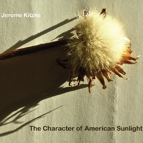 character-of-american-sunlight