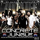Concrete Jungle [Explicit]