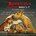 The Bunnicula Collection: Books 4-7: Nighty-Nightmare; Return to the Howliday Inn; Bunnicula Strikes Again!; Bunnicula Meets Edgar Allan Crow Audiobook by James Howe Narrated by Victor Garber, Patrick Mulvihill