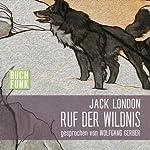 Ruf der Wildnis | Jack London