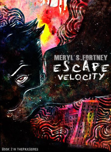 velocity book review amazon