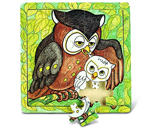 Puzzled Owl Wooden Jigsaw Puzzle