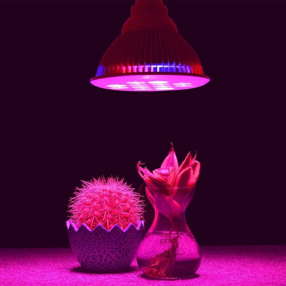 best flash sale led grow light bulb perfect grow. Black Bedroom Furniture Sets. Home Design Ideas