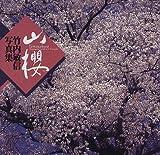 山桜―竹内敏信写真集