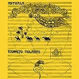 Tappeto Volante by Aktuala (2013-09-17)