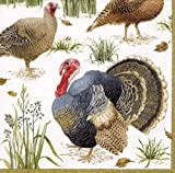 Caspari Entertaining with Caspari Wild Turkey Paper Dinner Napkins, Pack of 20