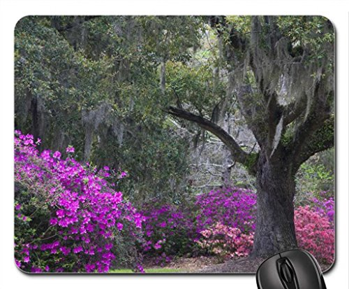 azalee-in-primavera-mouse-pad-tappetino-per-mouse-spiagge-mouse-pad