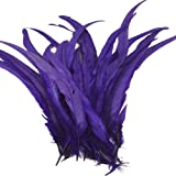 Sowder Purple Rooster Coque Tail Feathers 13-16inch Lengh Pack of 50 (Color: Purple)