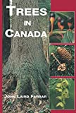 img - for Trees In Canada book / textbook / text book