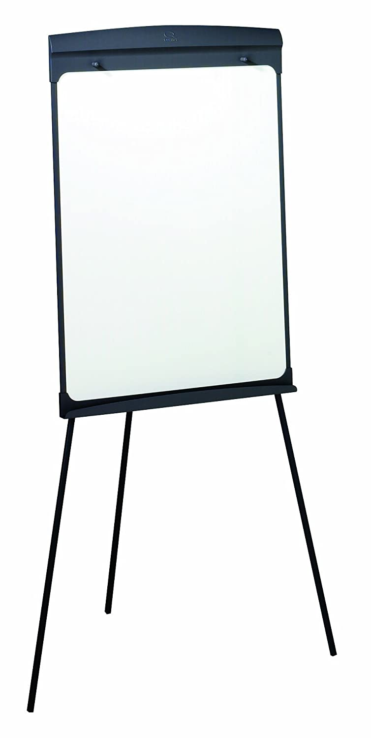 reversible double sided dry erase boards mobile and easel. Black Bedroom Furniture Sets. Home Design Ideas
