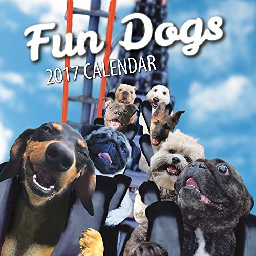 Fun Dogs 2017 Dog Wall Calendar (French Bulldog Puppies Calendar compare prices)