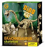 geoworld-dino-excavation-kit-23210681-brachiosaurus-kit-de-excavacion-de-esqueletos-de-dinosaurio-28-cm-importado-de-alemania