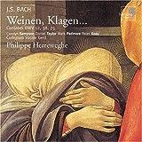Weinen,Klagen-Bwv 12,38 & 75