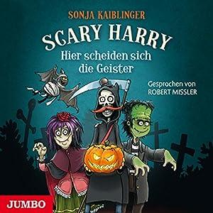 Hier scheiden sich die Geister (Scary Harry 6) Hörbuch von Sonja Kaiblinger Gesprochen von: Robert Missler