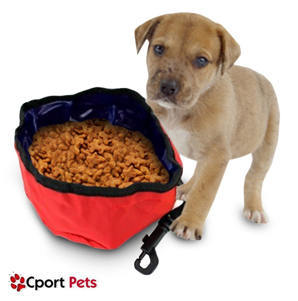 Portable Dog Pet Travel Collapsible Food Water Bowls Pets: Pet Travel Bowl Dog Cat Food Storage Feeder Collapsible