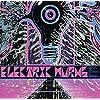 Musik,die Schwer zu Twerk (Lp+CD) [Vinyl LP] [Vinyl LP]