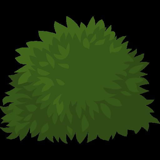 arbustes-ornementaux