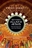 img - for Between Allah & Jesus: What Christians Can Learn from Muslims by Kreeft, Peter (2010) Paperback book / textbook / text book