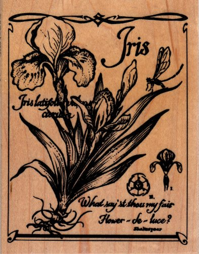 Iris Botanical Wood Mounted Rubber Stamp (K3131)