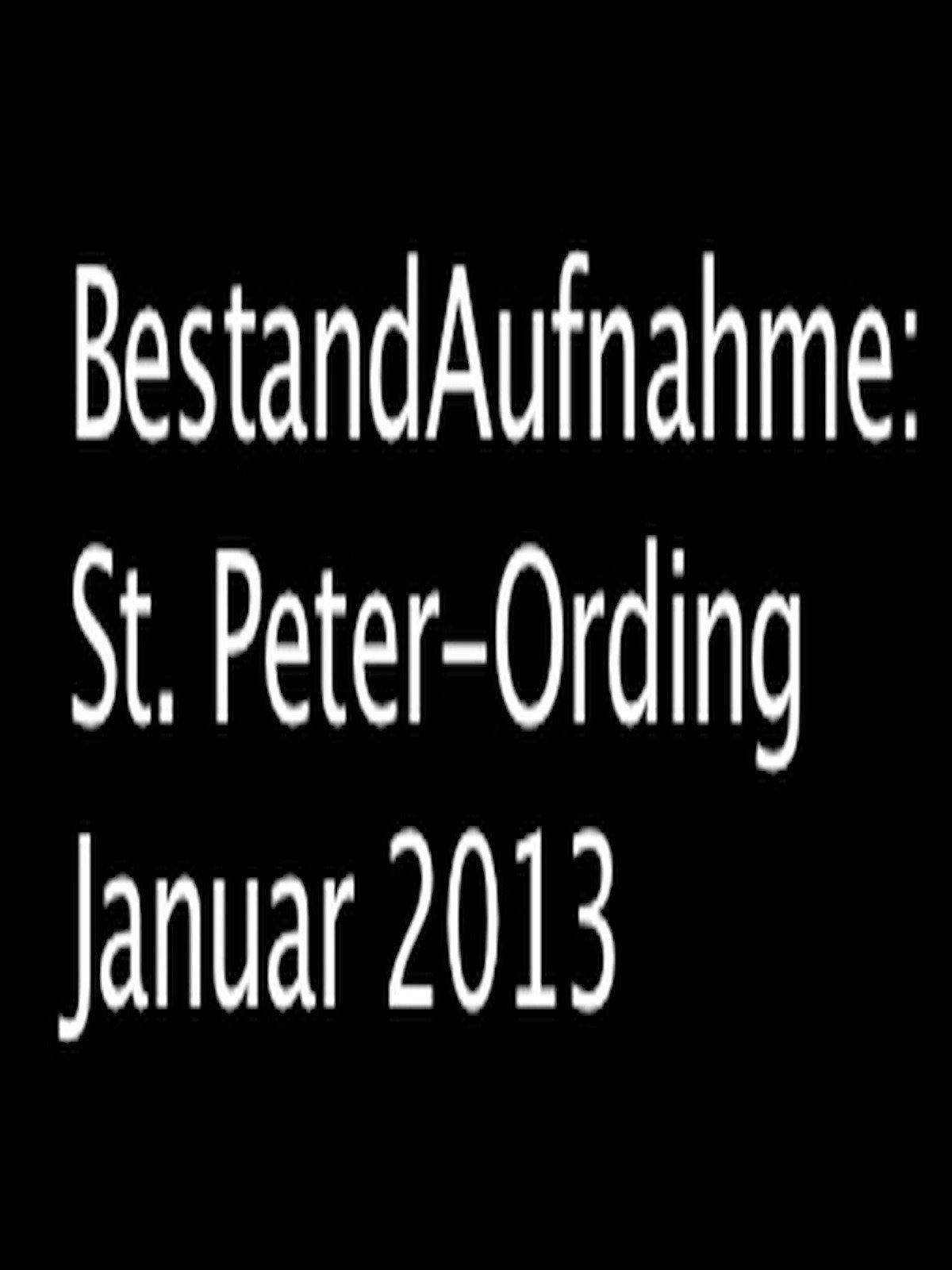 BestandAufnahme: St.Peter-Ording Januar 2013