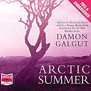 Arctic Summer Audiobook