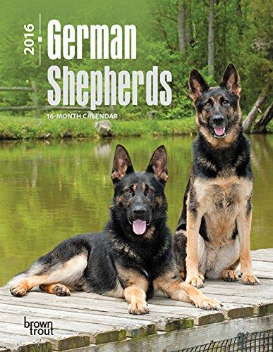 German Shepherds 2016 Desk Diary