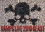 VAMPS LIVE 2010 BEAST