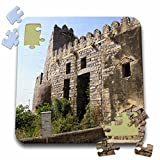 Angelique Cajam India - Fort Gloconda castle - 10x10 Inch Puzzle (pzl_26793_2)