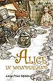 Alice in Wonderland: Large Print Edition