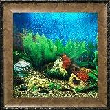 AquaVista AV500TABALE Wall-Mounted Aquarium AV 500 Tropical Water Background with Leo Frame