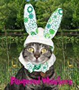 The Hopper bunny costume hat for cats and dogs (x-small (6-10